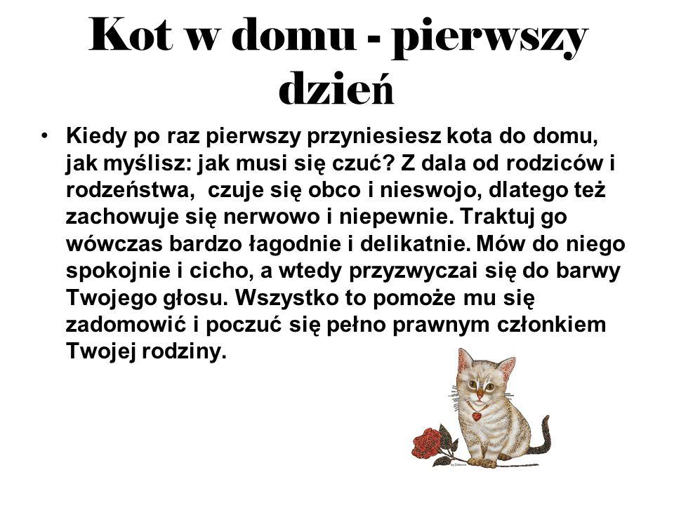 Kot w domu - pierwszy dzie ń Kiedy po raz pierwszy przyniesiesz kota do domu, jak myślisz: jak musi się czuć? Z dala od rodziców i rodzeństwa, czuje s