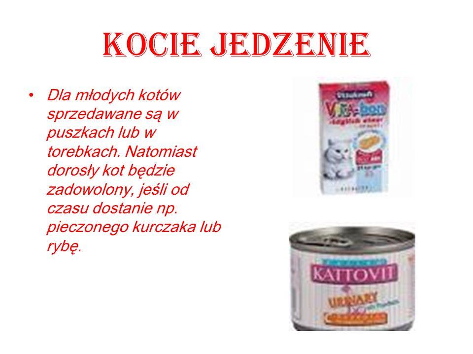 Kocie jedzenie Dla młodych kotów sprzedawane są w puszkach lub w torebkach. Natomiast dorosły kot będzie zadowolony, jeśli od czasu dostanie np. piecz