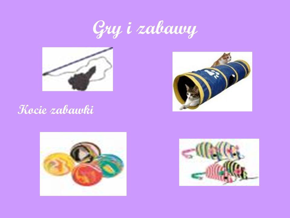 Gry i zabawy Kocie zabawki