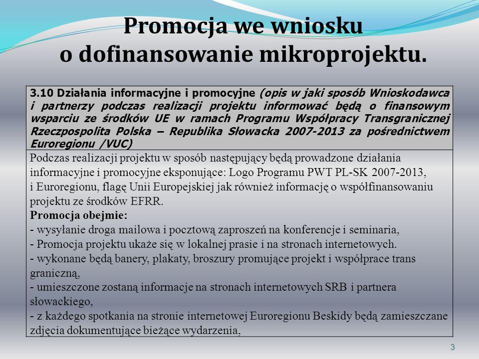 3 3.10 Działania informacyjne i promocyjne (opis w jaki sposób Wnioskodawca i partnerzy podczas realizacji projektu informować będą o finansowym wspar