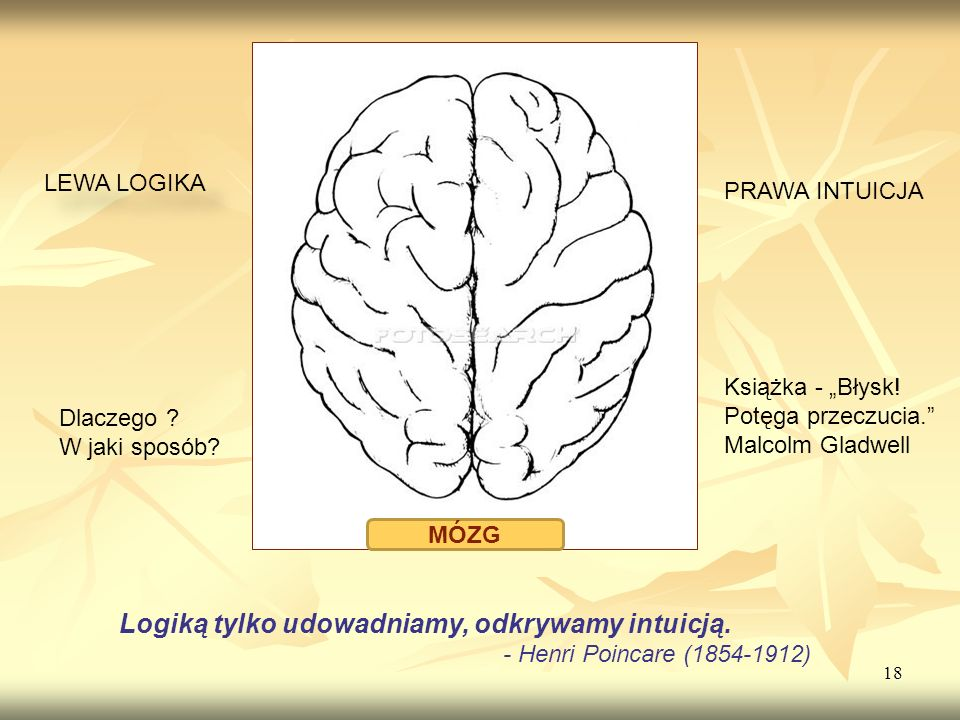18 LEWA LOGIKA Logiką tylko udowadniamy, odkrywamy intuicją. - Henri Poincare (1854-1912) PRAWA INTUICJA MÓZG Książka - Błysk! Potęga przeczucia. Malc