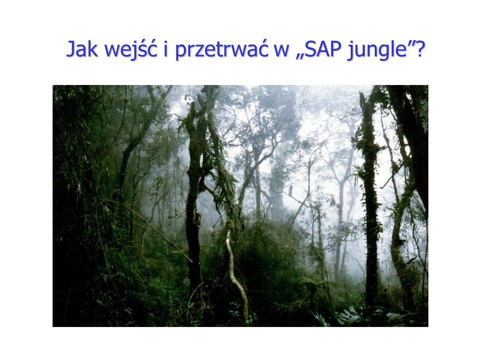 Jak wejść i przetrwać w SAP jungle?
