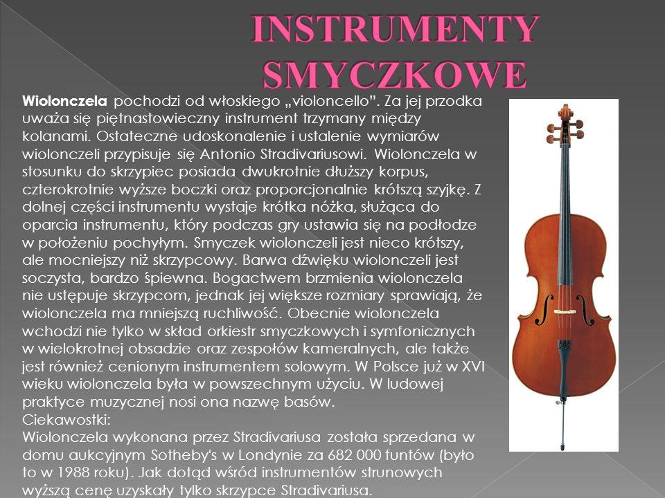 Wiolonczela pochodzi od włoskiego violoncello.