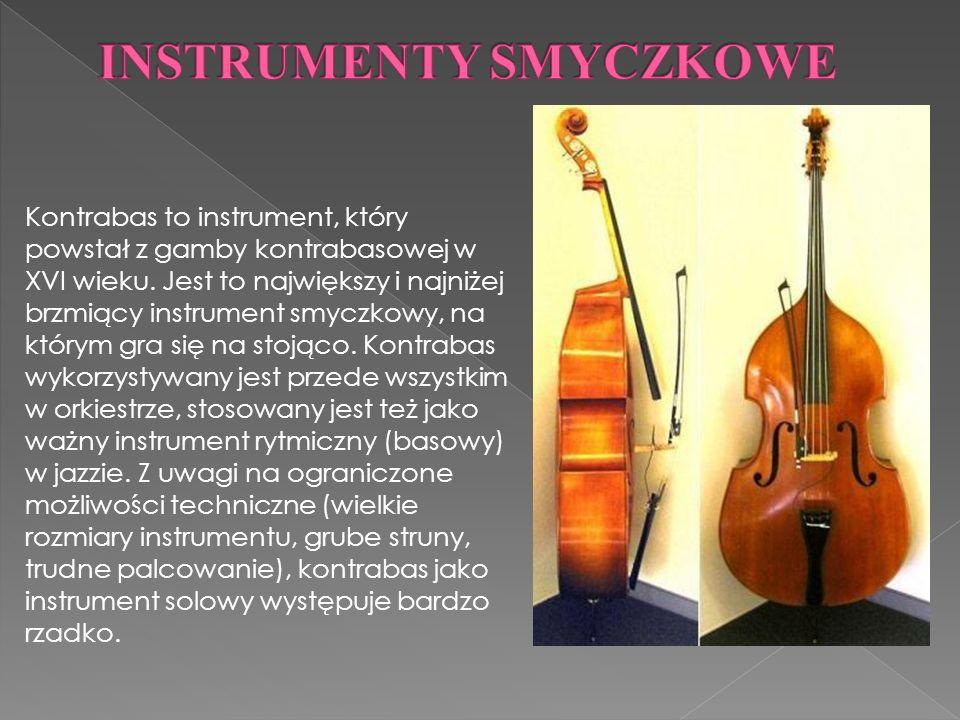 Kontrabas to instrument, który powstał z gamby kontrabasowej w XVI wieku.