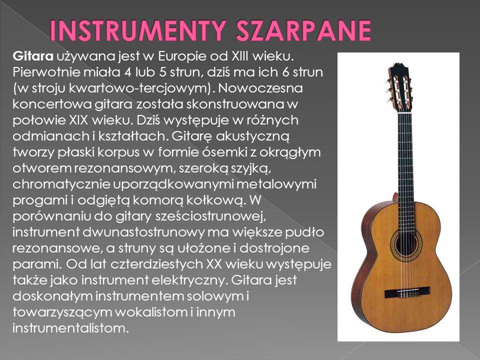 Gitara używana jest w Europie od XIII wieku.