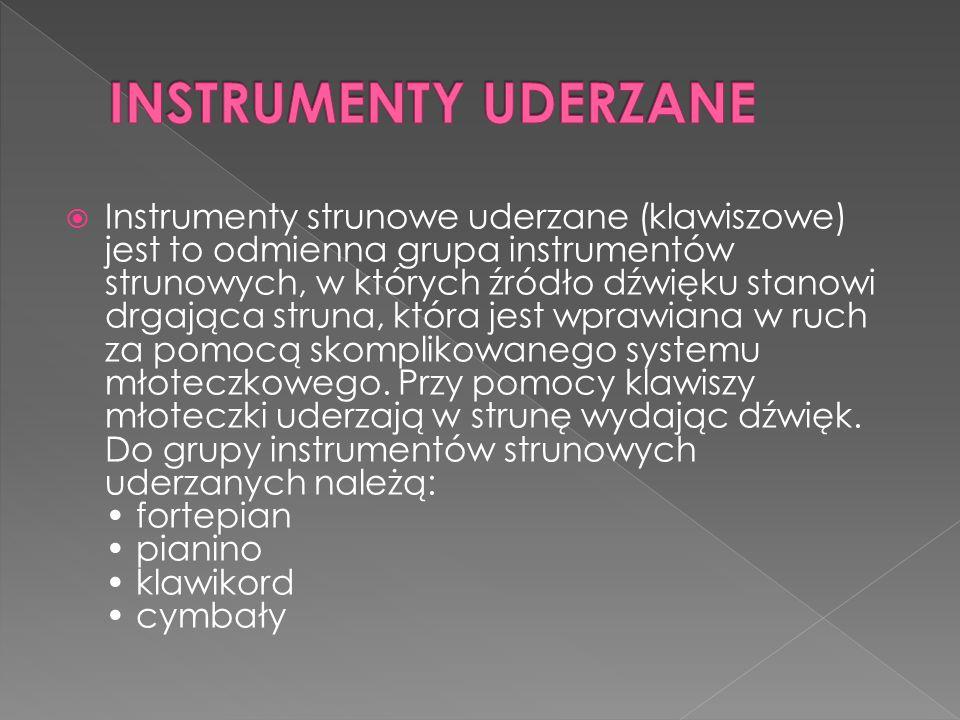 Instrumenty strunowe uderzane (klawiszowe) jest to odmienna grupa instrumentów strunowych, w których źródło dźwięku stanowi drgająca struna, która jest wprawiana w ruch za pomocą skomplikowanego systemu młoteczkowego.