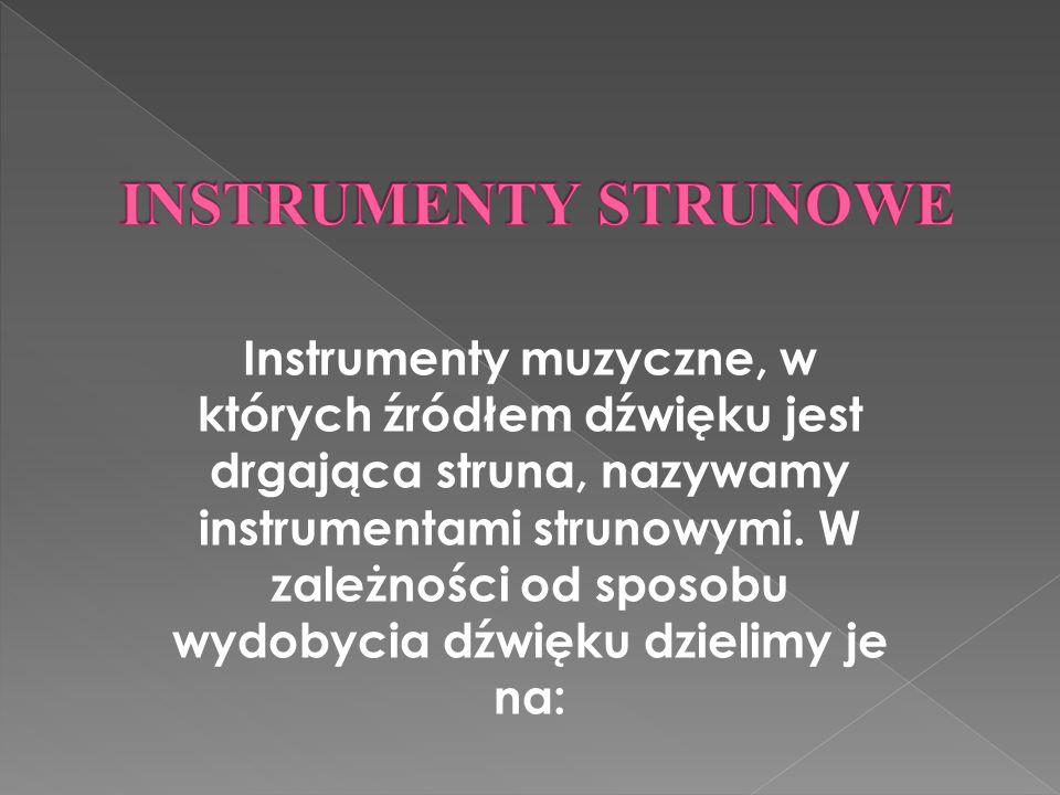 Instrumenty muzyczne, w których źródłem dźwięku jest drgająca struna, nazywamy instrumentami strunowymi.