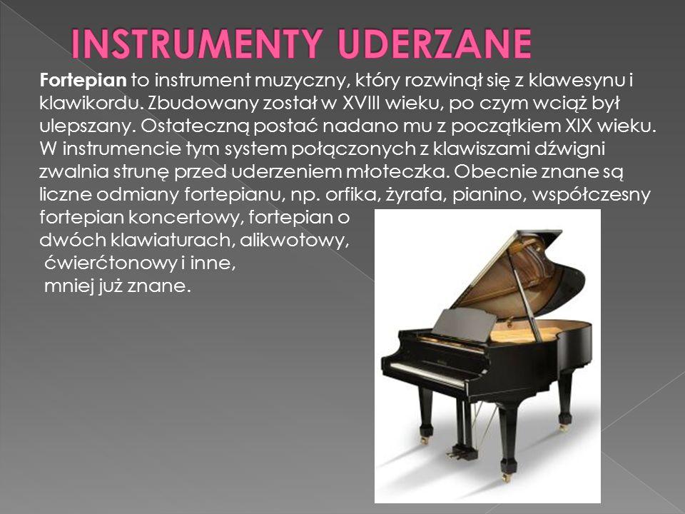 Fortepian to instrument muzyczny, który rozwinął się z klawesynu i klawikordu.