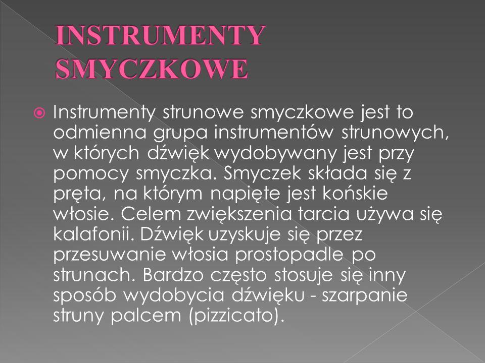 Instrumenty strunowe smyczkowe jest to odmienna grupa instrumentów strunowych, w których dźwięk wydobywany jest przy pomocy smyczka.