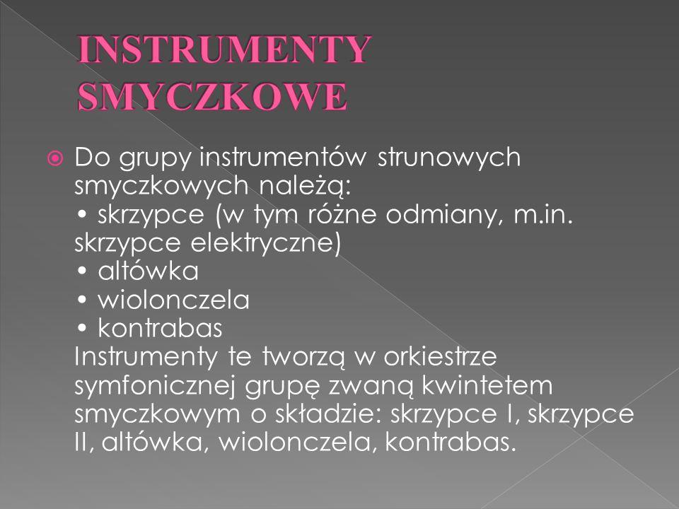 Do grupy instrumentów strunowych smyczkowych należą: skrzypce (w tym różne odmiany, m.in.