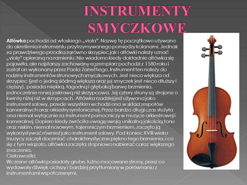 Altówka pochodzi od włoskiego viola.
