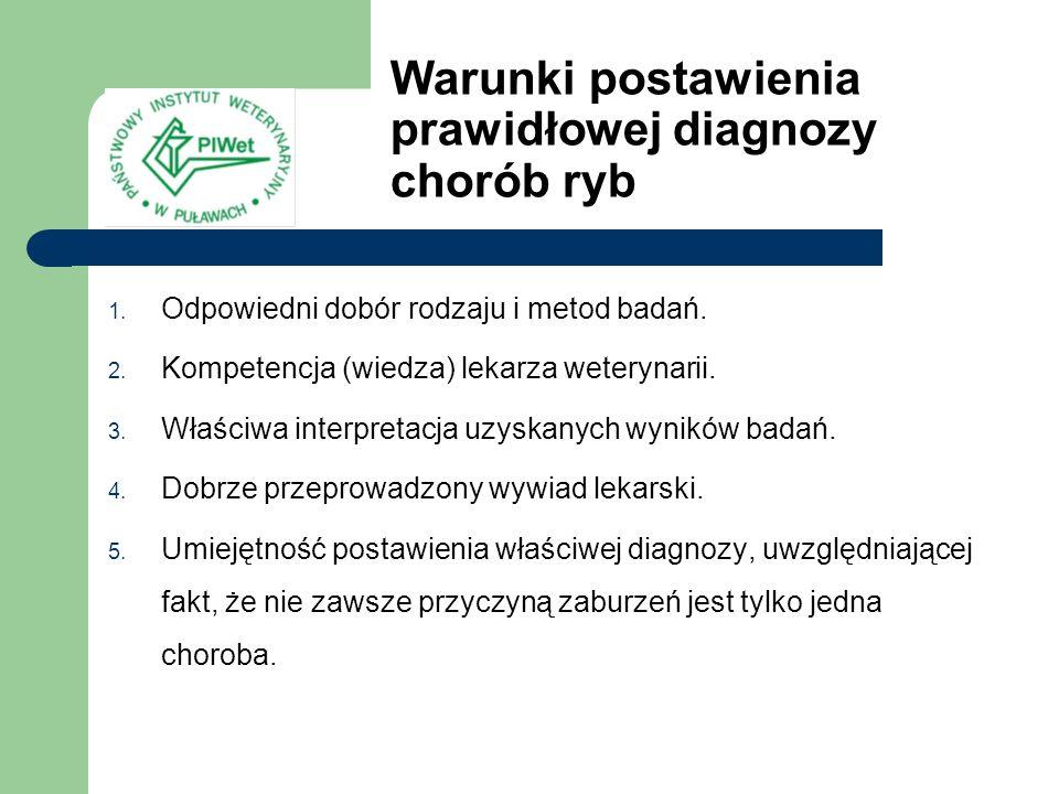 Warunki postawienia prawidłowej diagnozy chorób ryb 1. Odpowiedni dobór rodzaju i metod badań. 2. Kompetencja (wiedza) lekarza weterynarii. 3. Właściw