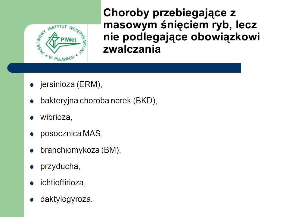 Jersinioza (ERM) Zwana też chorobą czerwonej gęby (enteric redmonth – ERM) Czynnik etiologiczny: Yersinia ruckeri Występuje w wielu krajach świata, w Polsce również Atakuje ryby łososiowate, najczęściej Pt Okres inkubacji: 5-19 dni Straty w pogłowiu ryb: 30-35% obsady, a niekiedy nawet 70% Objawy: – podpływanie pod dopływ, – zaczerwienienie jamy gębowej i gardła (przekrwienie), – wybroczyny w jamie gębowej, w gardle oraz u nasady płetw, – wylewy krwawe w gałce ocznej, – ogniskowe przekrwienie powłok zewnętrznych, – martwicze ubytki mięśni, – pociemnienie skóry, – niekiedy wysadzenie gałek ocznych.