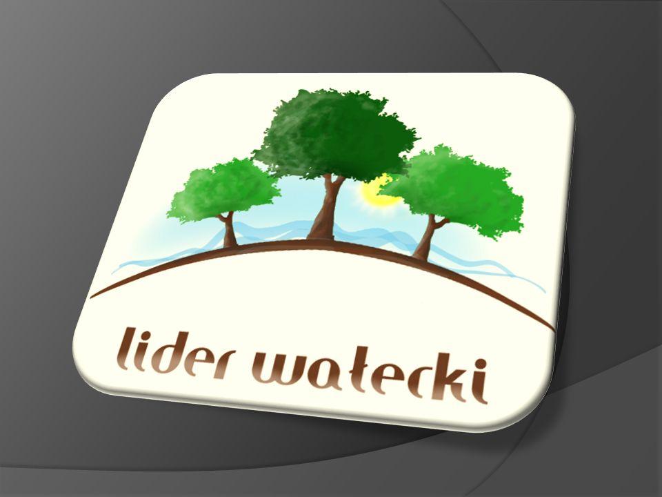 Gmina Człopa – powierzchnia ogółem – 348,37 km 2 (24,6% powierzchni powiatu) Ludność ogółem - 5.340 mieszkańców; Gmina Mirosławiec zajmuje powierzchnię 195,87 km 2 (14,4% powierzchni powiatu) zamieszkałą przez 6703 osoby; Gmina Tuczno zajmuje powierzchnię 250 km 2 (17,7% powierzchni powiatu) zamieszkuje ją 5480 osób; Gmina Wałcz zajmuje powierzchnię 575,09 km 2 (40,7% powierzchni powiatu) zamieszkałą przez 12362 osoby.