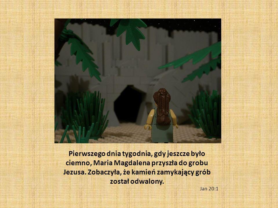 Pierwszego dnia tygodnia, gdy jeszcze było ciemno, Maria Magdalena przyszła do grobu Jezusa. Zobaczyła, że kamień zamykający grób został odwalony. Jan