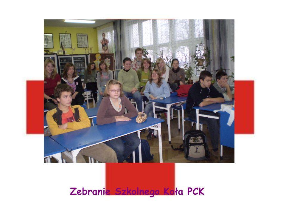 Zebranie Szkolnego Koła PCK