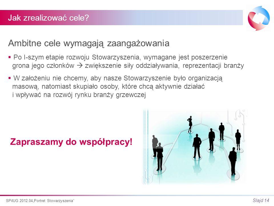 Slajd 14 SPiIUG 2012.04Portret Stowarzyszenia Jak zrealizować cele.