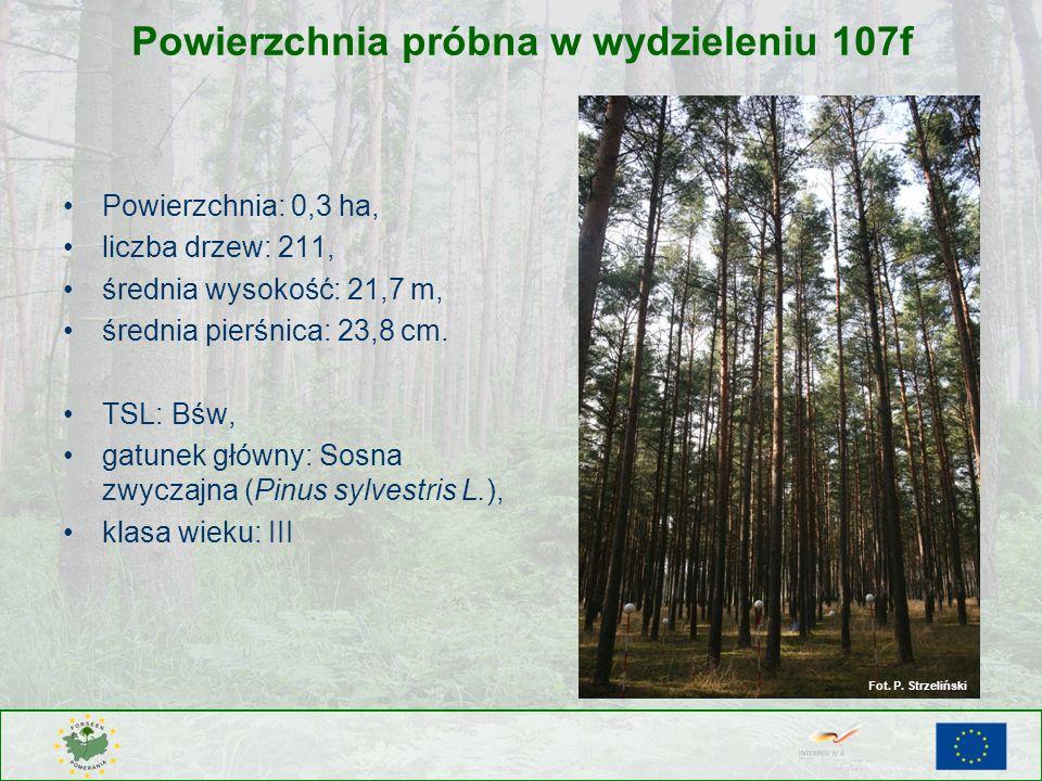Powierzchnia próbna w wydzieleniu 107f Powierzchnia: 0,3 ha, liczba drzew: 211, średnia wysokość: 21,7 m, średnia pierśnica: 23,8 cm. TSL: Bśw, gatune