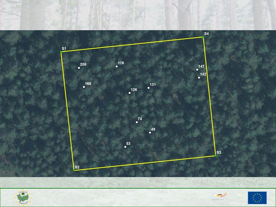 Wybór drzew, które wchodzą w obręb powierzchni próbnej.
