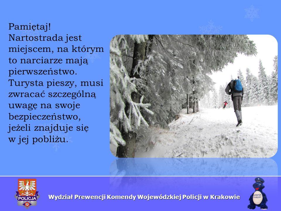 Wydział Prewencji Komendy Wojewódzkiej Policji w Krakowie Pamiętaj! Nartostrada jest miejscem, na którym to narciarze mają pierwszeństwo. Turysta pies