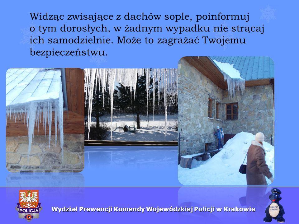 Wydział Prewencji Komendy Wojewódzkiej Policji w Krakowie Widząc zwisające z dachów sople, poinformuj o tym dorosłych, w żadnym wypadku nie strącaj ic