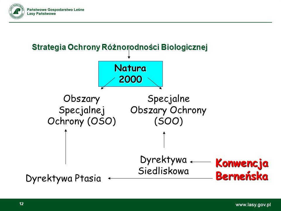 12 Strategia Ochrony Różnorodności Biologicznej Konwencja Berneńska Natura 2000 Obszary Specjalnej Ochrony (OSO) Specjalne Obszary Ochrony (SOO) Dyrektywa Ptasia Dyrektywa Siedliskowa