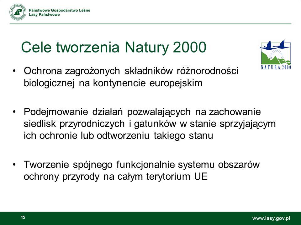 15 Ochrona zagrożonych składników różnorodności biologicznej na kontynencie europejskim Podejmowanie działań pozwalających na zachowanie siedlisk przyrodniczych i gatunków w stanie sprzyjającym ich ochronie lub odtworzeniu takiego stanu Tworzenie spójnego funkcjonalnie systemu obszarów ochrony przyrody na całym terytorium UE Cele tworzenia Natury 2000