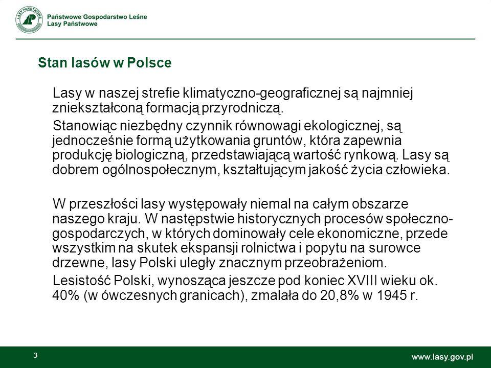 3 Stan lasów w Polsce Lasy w naszej strefie klimatyczno-geograficznej są najmniej zniekształconą formacją przyrodniczą. Stanowiąc niezbędny czynnik ró