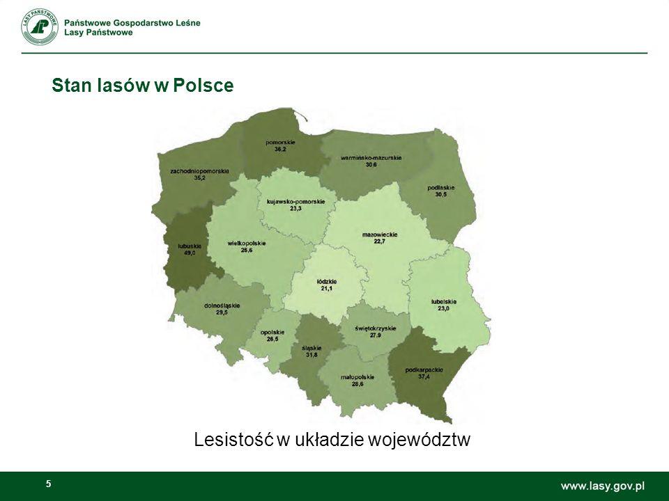5 Stan lasów w Polsce Lesistość w układzie województw