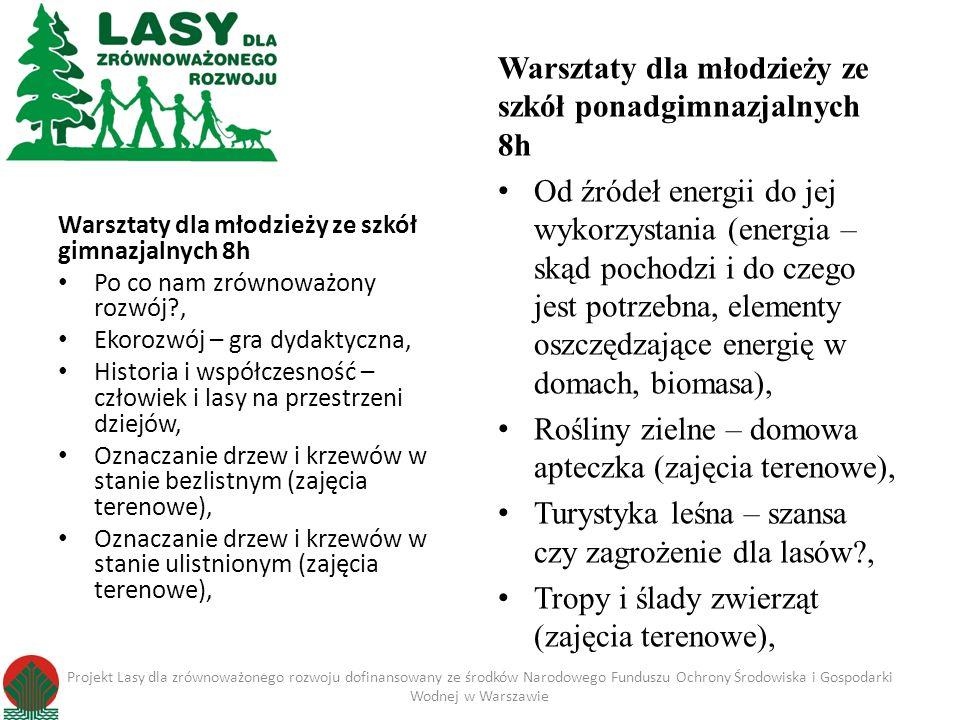 Warsztaty dla młodzieży ze szkół gimnazjalnych 8h Po co nam zrównoważony rozwój?, Ekorozwój – gra dydaktyczna, Historia i współczesność – człowiek i l