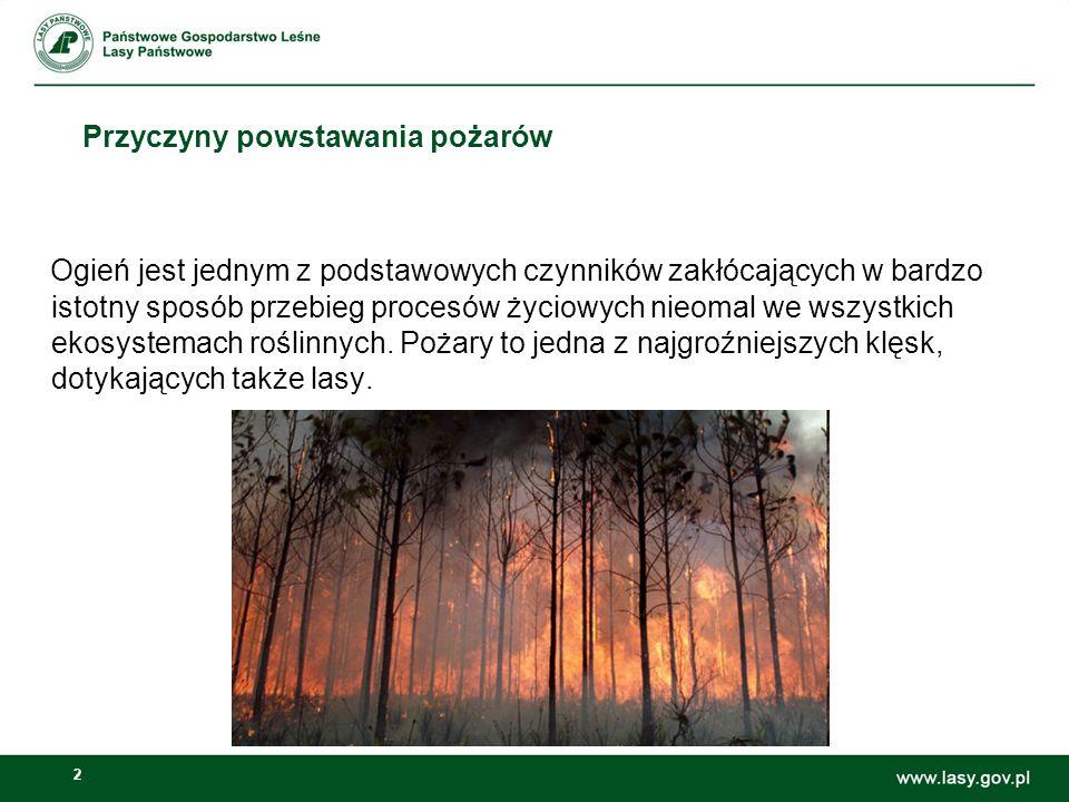 3 Przyczyny powstawania pożarów Coraz częściej pożary lasów traktowane są również w szerszym aspekcie, jako klęska ekologiczna.