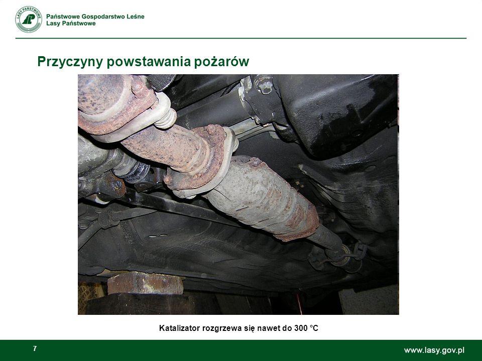 8 Skutki pożarów Szczególna waga zagrożenia, jakim są pożary lasów wynika z faktu, że lasy polskie zaliczają się do najbardziej palnych lasów Europy Środkowej.