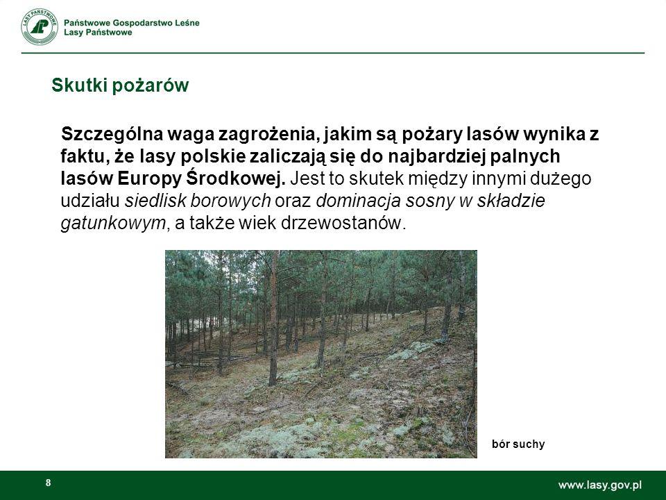 8 Skutki pożarów Szczególna waga zagrożenia, jakim są pożary lasów wynika z faktu, że lasy polskie zaliczają się do najbardziej palnych lasów Europy Ś