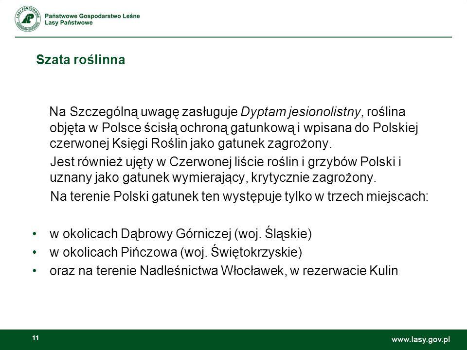 11 Szata roślinna Na Szczególną uwagę zasługuje Dyptam jesionolistny, roślina objęta w Polsce ścisłą ochroną gatunkową i wpisana do Polskiej czerwonej