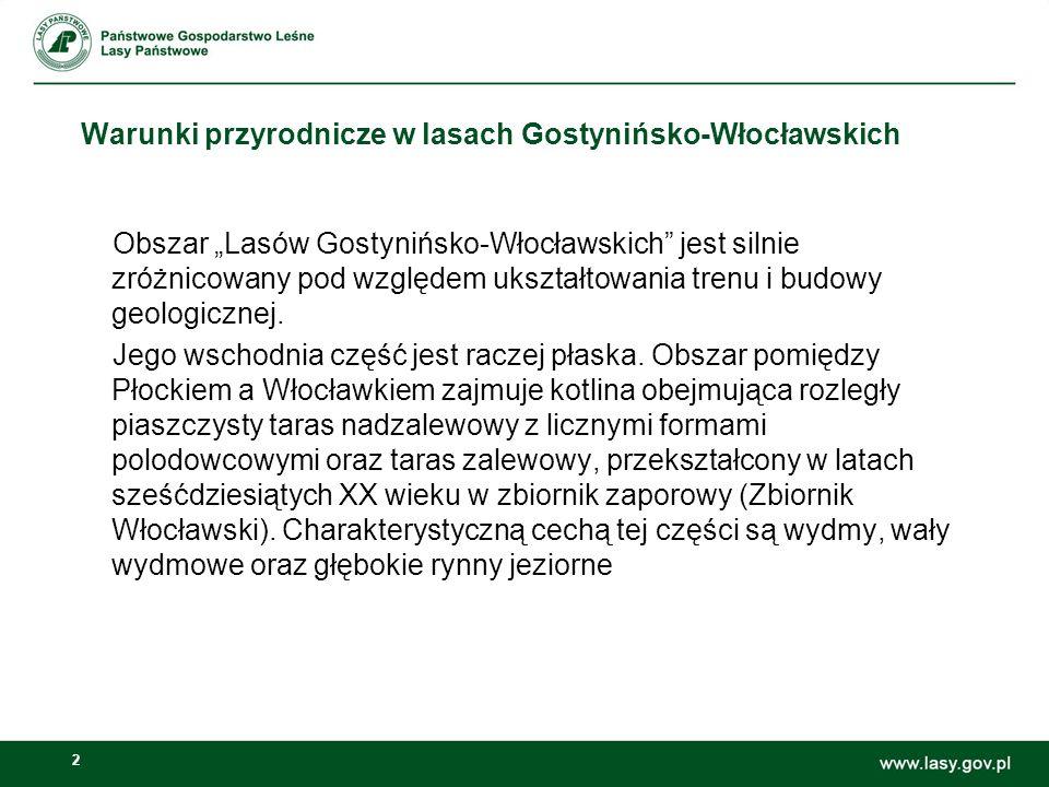 2 Warunki przyrodnicze w lasach Gostynińsko-Włocławskich Obszar Lasów Gostynińsko-Włocławskich jest silnie zróżnicowany pod względem ukształtowania tr