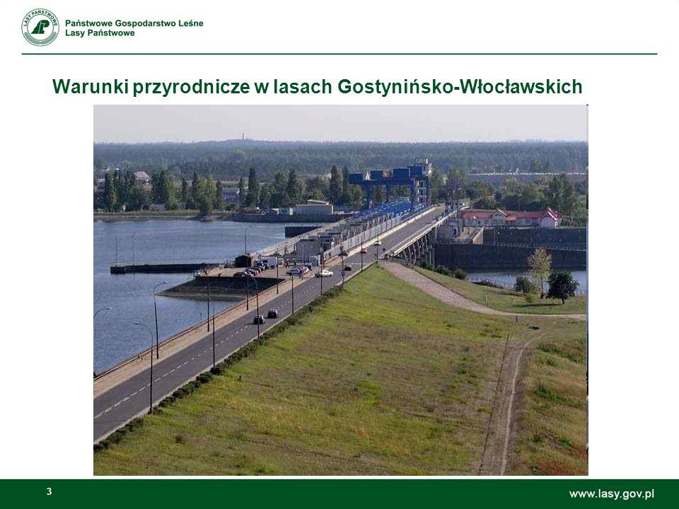 3 Warunki przyrodnicze w lasach Gostynińsko-Włocławskich