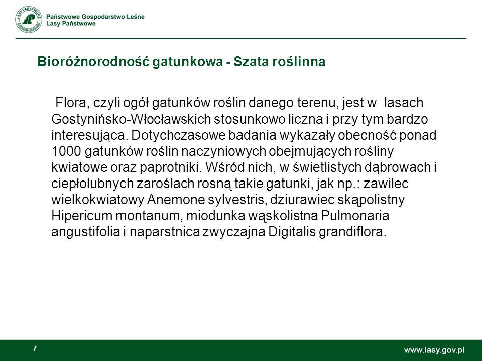 7 Bioróżnorodność gatunkowa - Szata roślinna Flora, czyli ogół gatunków roślin danego terenu, jest w lasach Gostynińsko-Włocławskich stosunkowo liczna