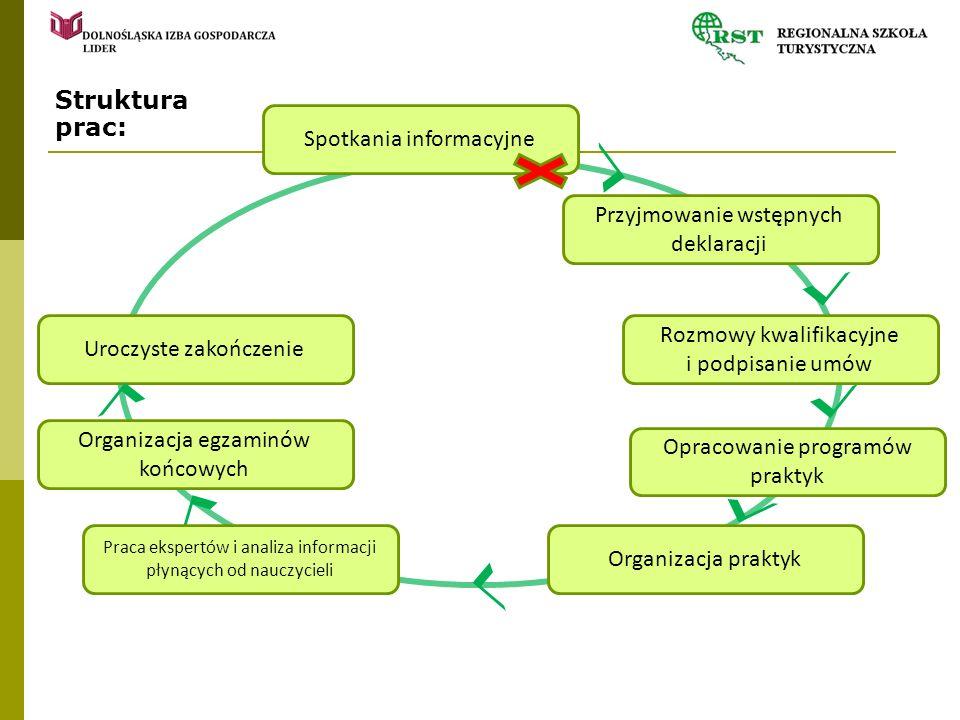 Struktura prac: Spotkania informacyjne Przyjmowanie wstępnych deklaracji Opracowanie programów praktyk Organizacja praktyk Rozmowy kwalifikacyjne i po