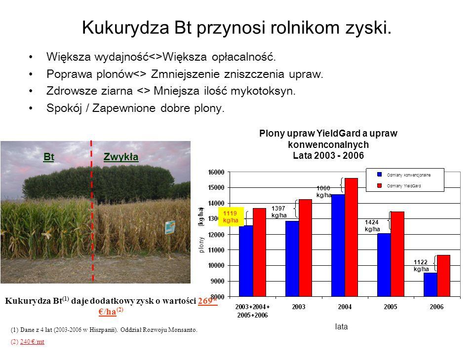 Kukurydza Bt przynosi rolnikom zyski.