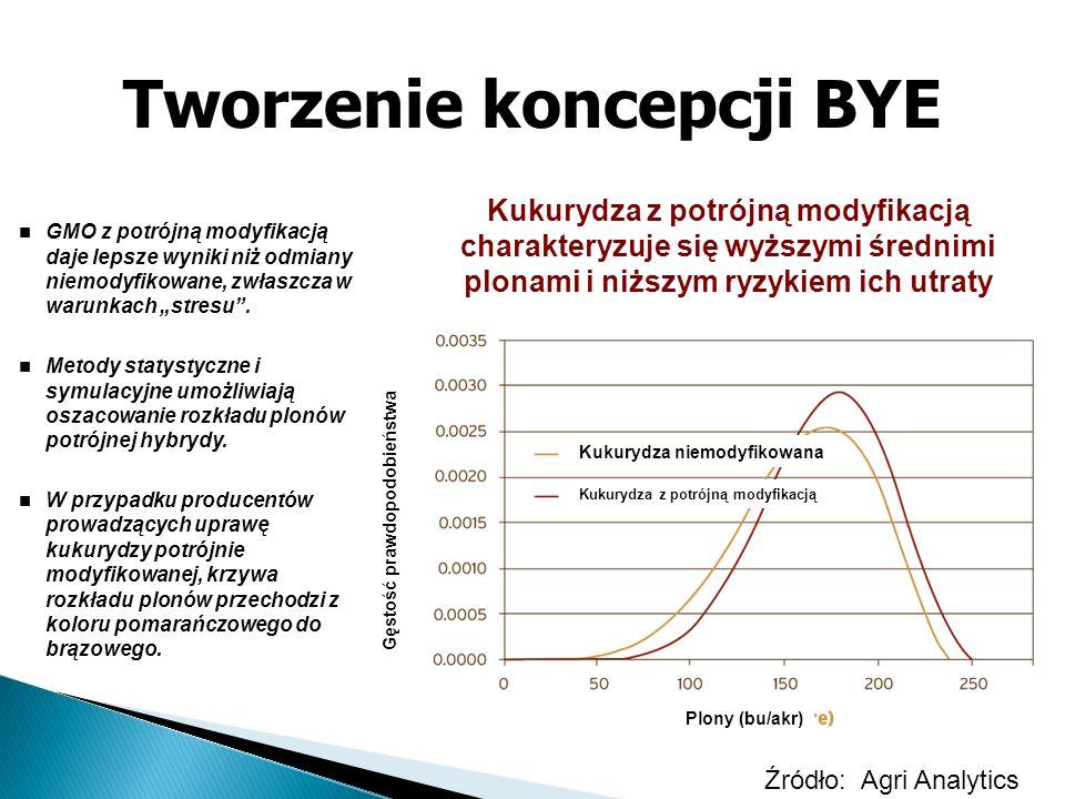Tworzenie koncepcji BYE Kukurydza z potrójną modyfikacją charakteryzuje się wyższymi średnimi plonami i niższym ryzykiem ich utraty GMO z potrójną mod