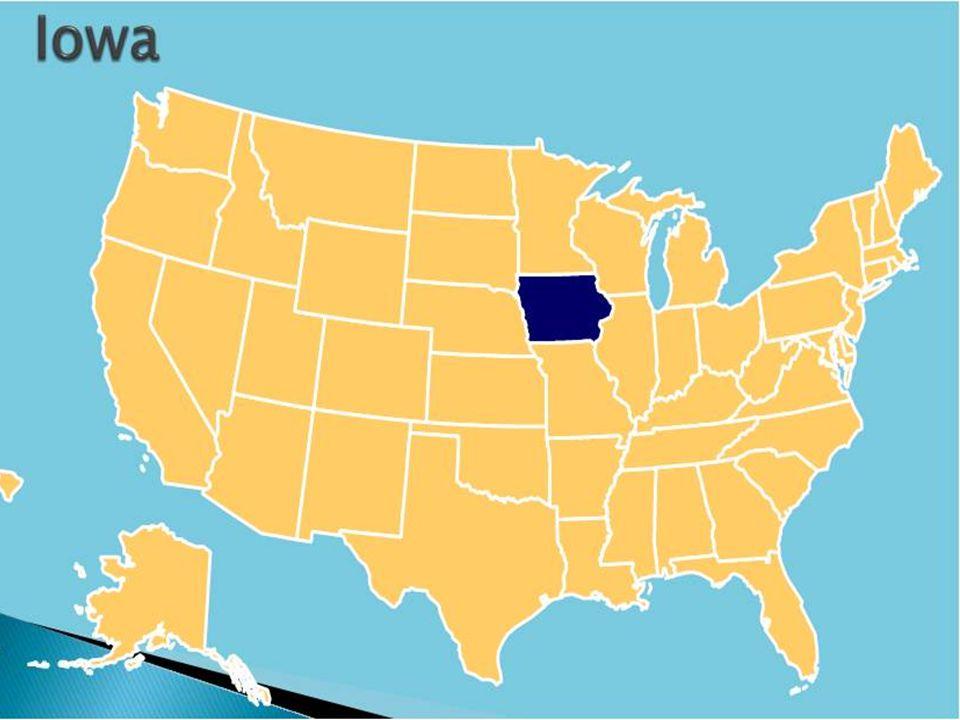 Typowa amerykańska instalacja pierwszej generacji do produkcji etanolu (z ziarna) CO 2 Enzymy biorące udział w hydrolizie skrobi Fermentator wyparka Ziarno Mielenie Destylacja Etanol Woda Skrobia Cukier Podestylacyjny susz kukurydziany i substancje rozpuszczalne (ang.