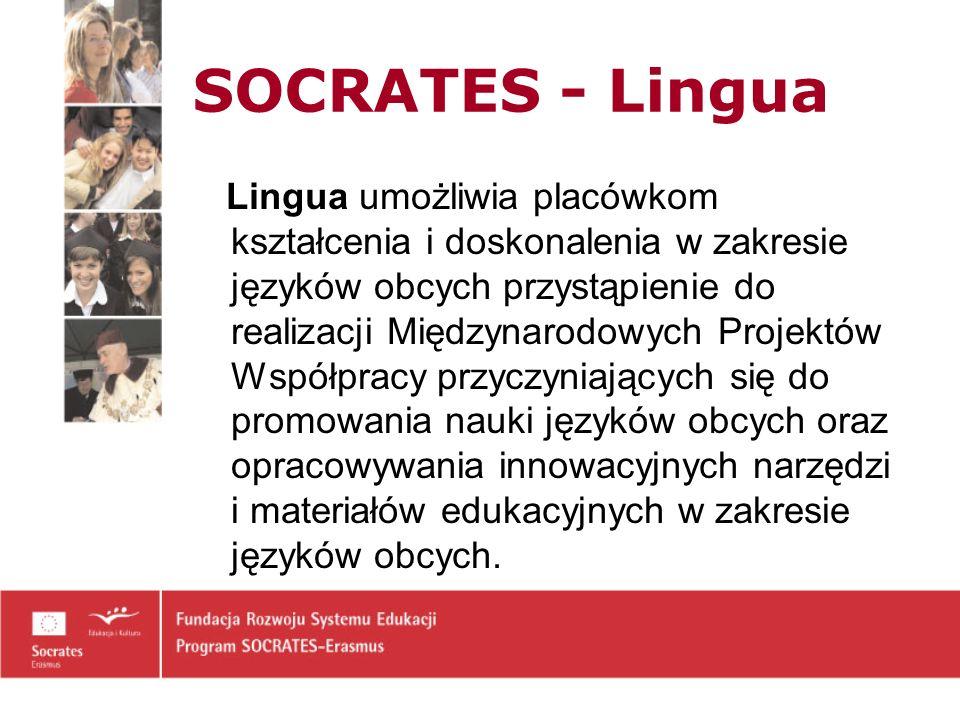 SOCRATES - Lingua Lingua umożliwia placówkom kształcenia i doskonalenia w zakresie języków obcych przystąpienie do realizacji Międzynarodowych Projektów Współpracy przyczyniających się do promowania nauki języków obcych oraz opracowywania innowacyjnych narzędzi i materiałów edukacyjnych w zakresie języków obcych.