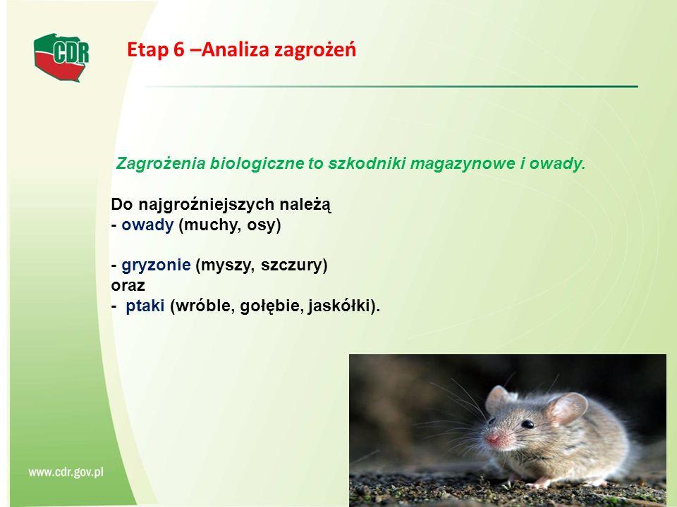 Zagrożenia biologiczne to szkodniki magazynowe i owady. Do najgroźniejszych należą - owady (muchy, osy) - gryzonie (myszy, szczury) oraz - ptaki (wrób