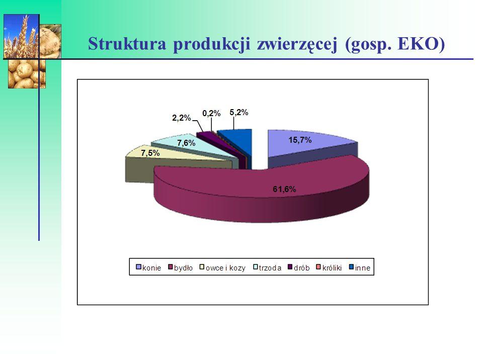 Struktura użytkowania gruntów (%) Wyszcz.PolskaGospodarstwa eko 2004 2008 T UZ 19,74749 Uprawy rolnicze 56,74022 Sady i jagodniki 2,13,919,1 Warzywa 1,61,01,1