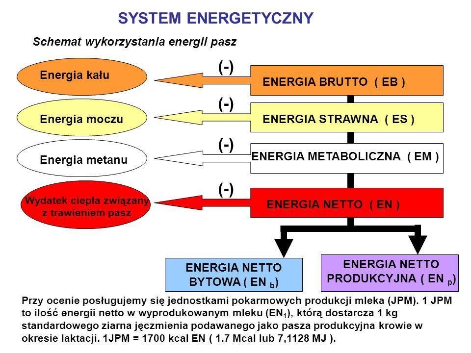 SCHEMAT OCENY WARTOŚCI POKARMOWEJ BIAŁKA PASZ BIAŁKO OGÓLNEENERGIA (SMOF) Ulegające rozkładowi w żwaczu BURŻ Nie ulegające rozkładowi w żwaczu BNRŻ Białko mikroorganizmów żwacza BMŻ Białko mikroorganizmów żwacza BMŻ (0,145g/g SMOF) TRAWIONE W JELICIE BIAŁKO: MIKROORGANIZMÓW ŻWACZA PASZY MIKROORGANIZMÓW ŻWACZA BTJMNBTJPBTJME BTJN Suma BTJMN i BTJP BTJE Suma BTJME i BTJP Wartość pokarmową białka pasz wyraża się w białku właściwym rzeczywiście trawionym w jelicie (BTJ)