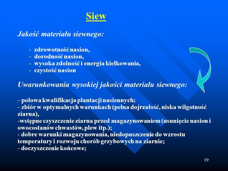 19 Siew Jakość materiału siewnego: - zdrowotność nasion, - dorodność nasion, - wysoka zdolność i energia kiełkowania, - czystość nasion Uwarunkowania