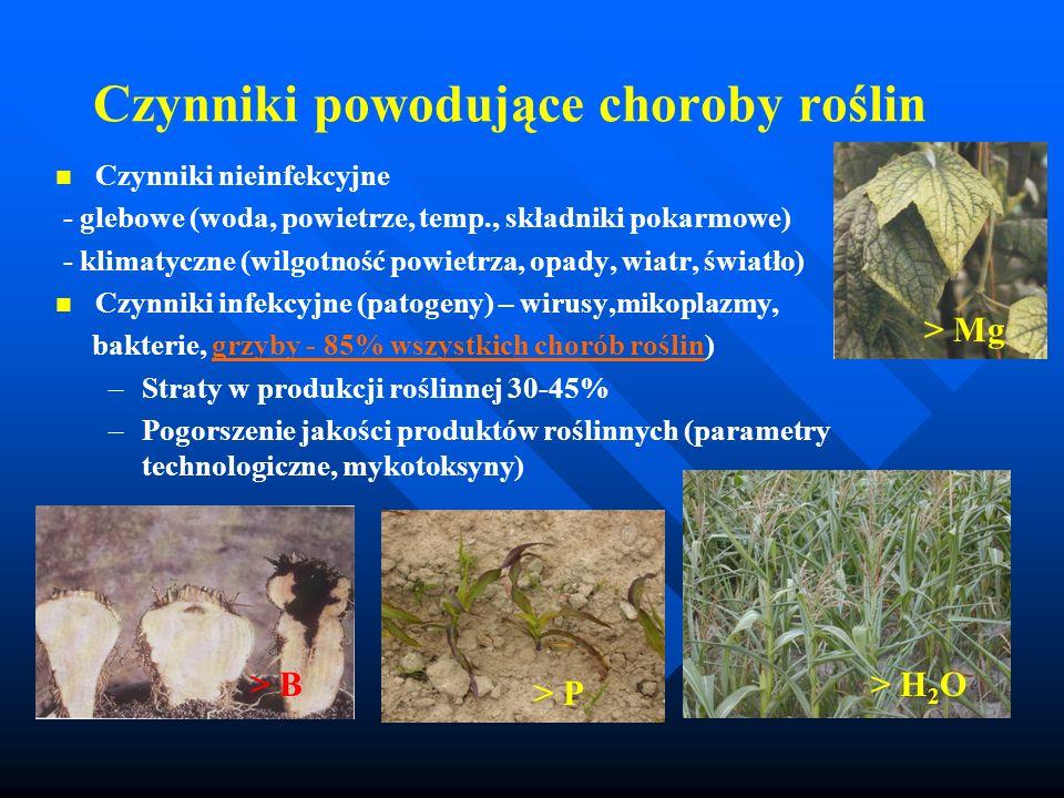 Czynniki powodujące choroby roślin Czynniki nieinfekcyjne - glebowe (woda, powietrze, temp., składniki pokarmowe) - klimatyczne (wilgotność powietrza,