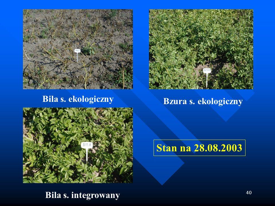 40 Bila s. integrowany Bzura s. ekologiczny Bila s. ekologiczny Stan na 28.08.2003