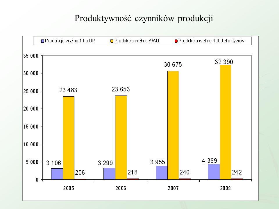 Produktywność czynników produkcji