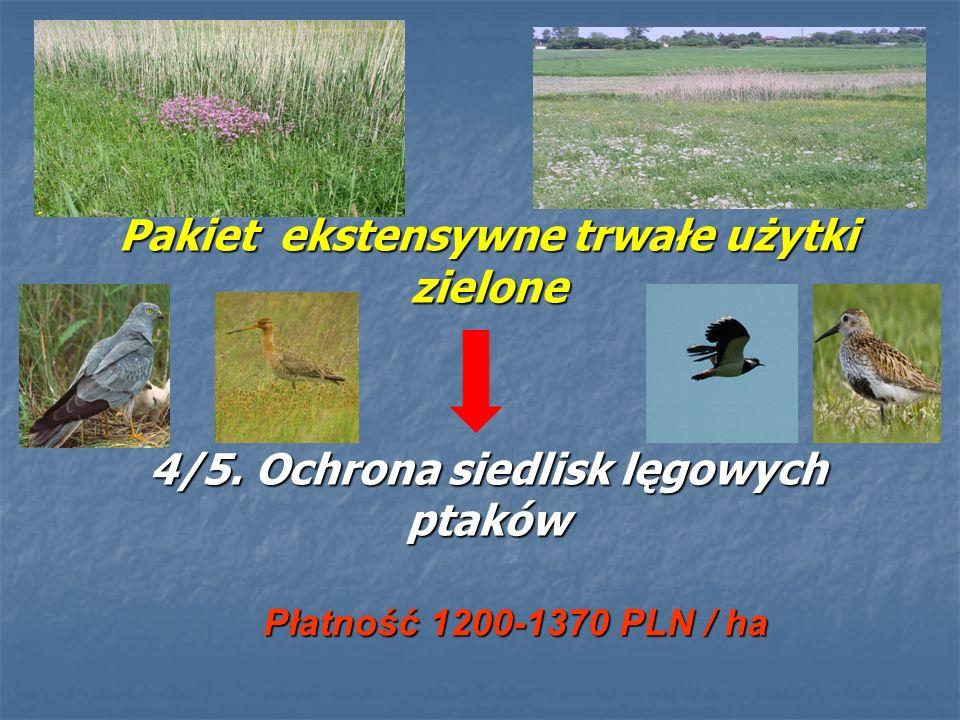 Pakiet ekstensywne trwałe użytki zielone 4/5. Ochrona siedlisk lęgowych ptaków Płatność 1200-1370 PLN / ha